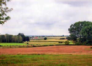 Flanders fields in Belgium
