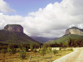 the road to Castello d'Alaro