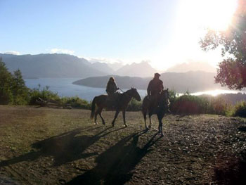 two horses in Argentina