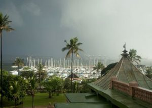 Durban harbour with boats and palm trees