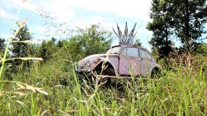 Pink VW beetle in grass