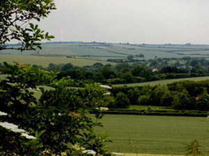 the Hampshire countryside