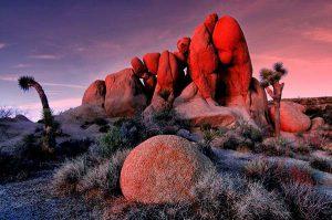 rocks in Joshua Tree park