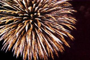 firework exploding in night sky