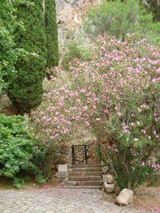 entrance to Sanctuary of Athena Pronaia