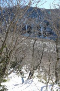 looking up towards Mount Halla summit